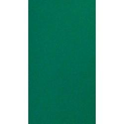 CARTOLINA COLOR 185 GRS. FULL 50 X 65 CM: VERD AVET